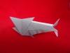 Miguel's paper shark